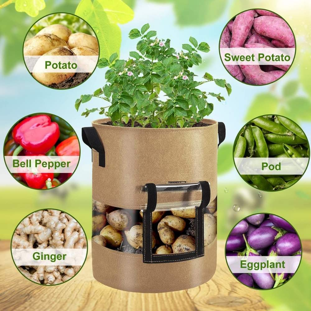 best grow potatoes planter