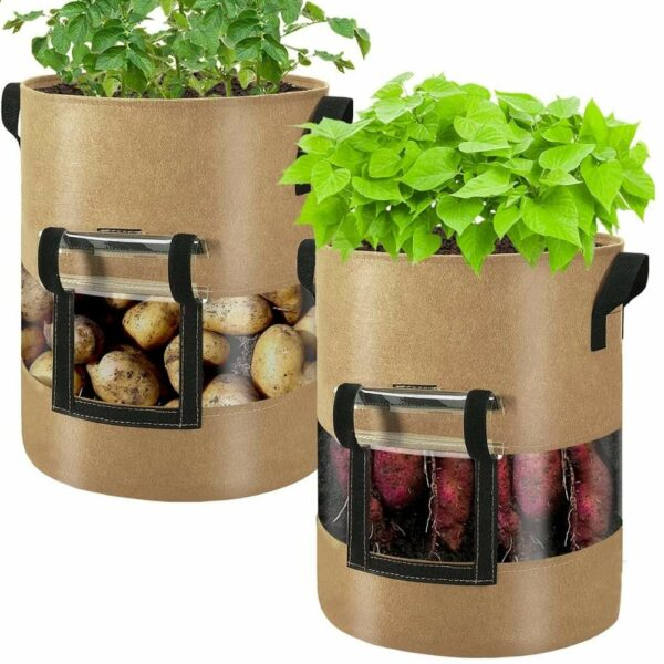 buy potato planting bag online